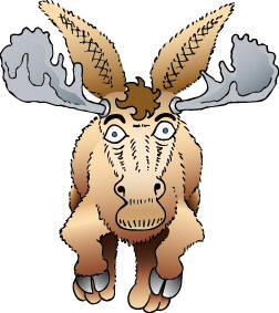 whooping-moose